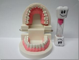 Dental hygiene training